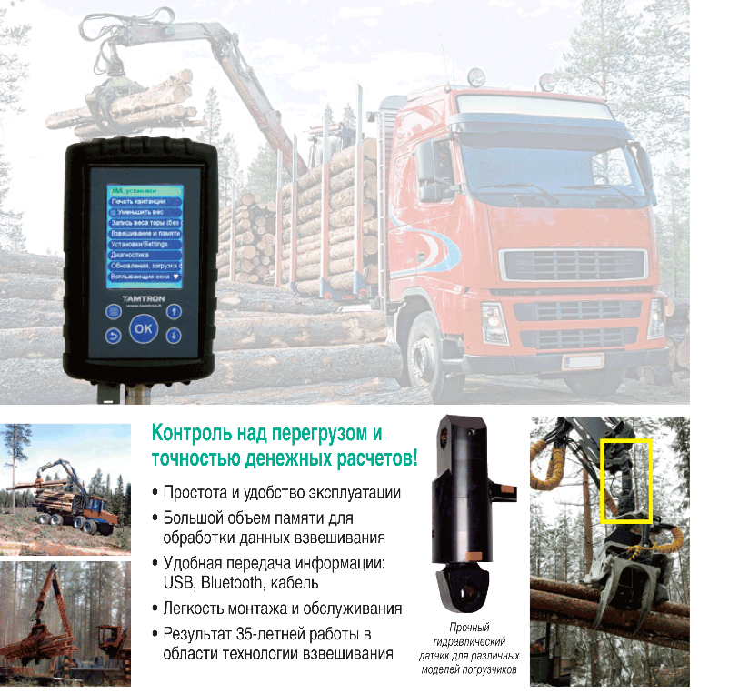 Timber-Bioenergy-RUS-BT-1-1